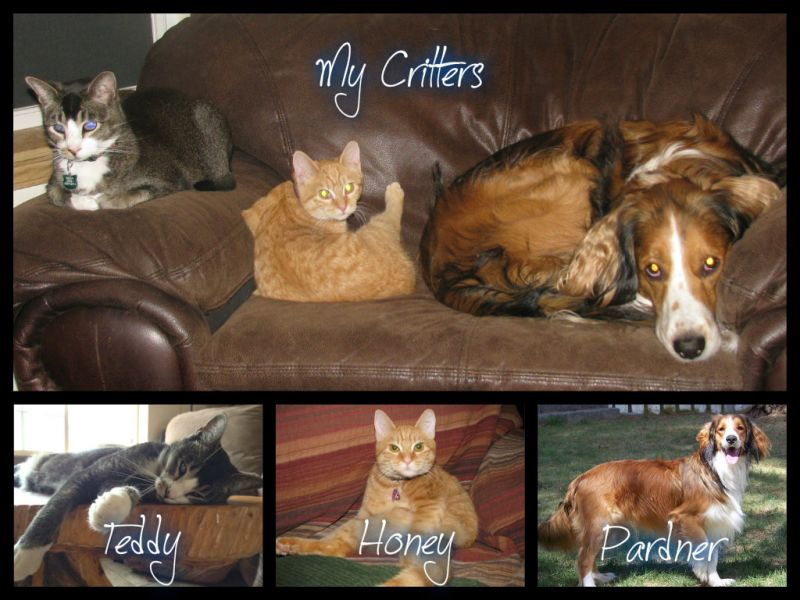 MyCritters